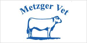 bronze-3-metzger